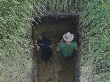 Analyse agroécologie